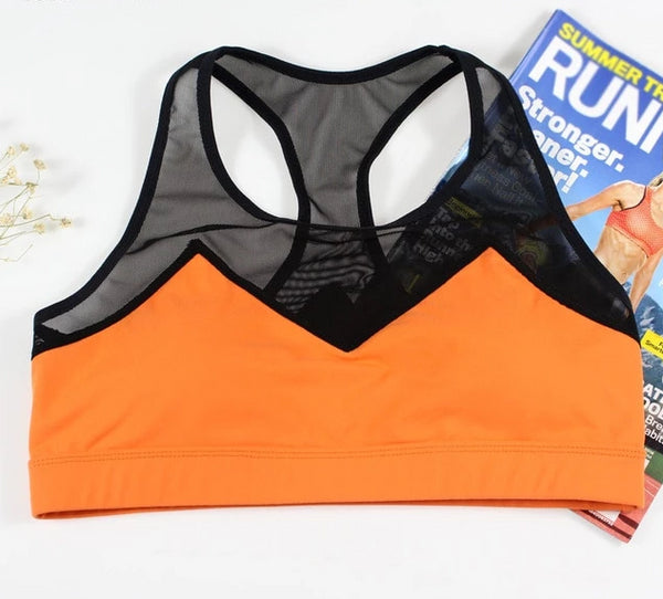 Waist Trainer Sports Fitness Bra