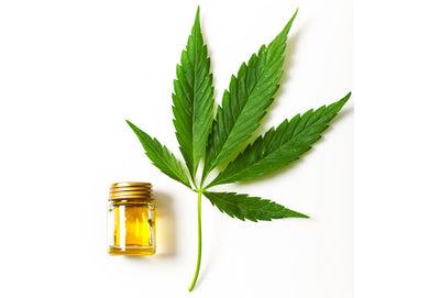 Before Buying CBD Raw Materials: Check the C.O.A.