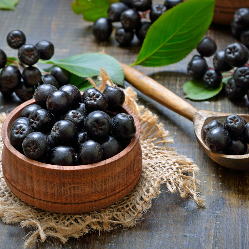 Frozen Aronia Berries | Improve Your Health | Anti-Oxidant | Immune Boosting | Homestead Aronia