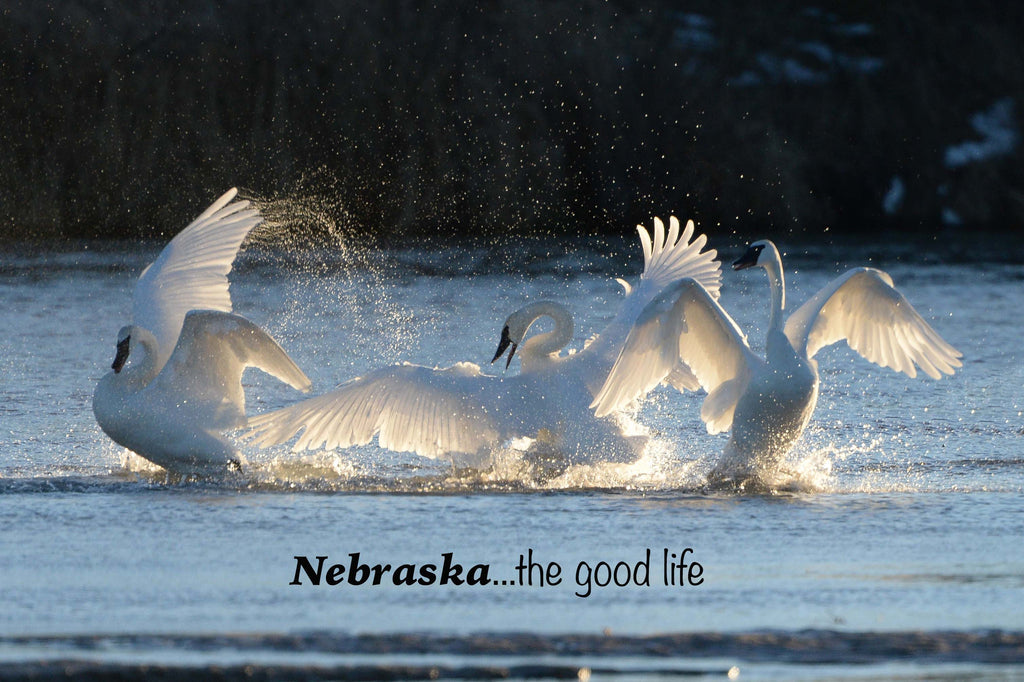 Nebraska Postcards | Nebraska Photography | Easy Travel Nebraska Gifts