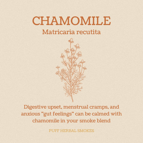 Chamomile Instagram Post
