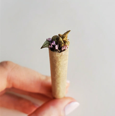 an herbal spliff with cannabis and smokable herbs