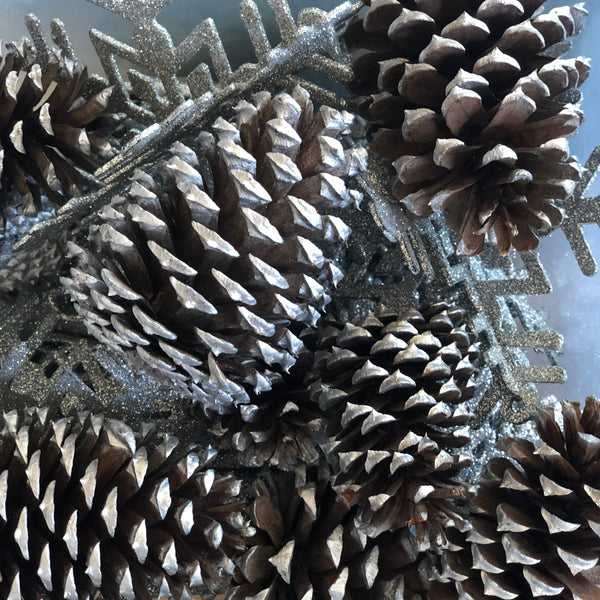 Pinecones painted silver