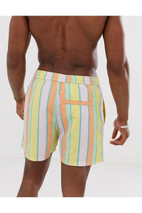 Pastel Stripe Swim Shorts
