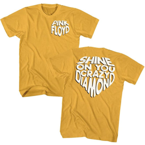 PINK FLOYDHINE ON-GINGER ADULT S/S TSHIRT ***F&B***