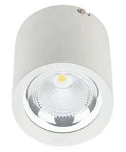 LED Surface Mounted Downlight Ceiling Light MZ 10W/20W/30W/40W