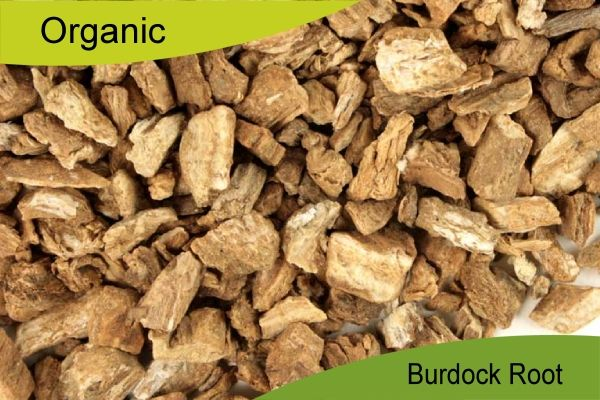 Burdock root(Arctium Lappa) Organic Health Tea anti stomachache,Anti Toxin 50gr.