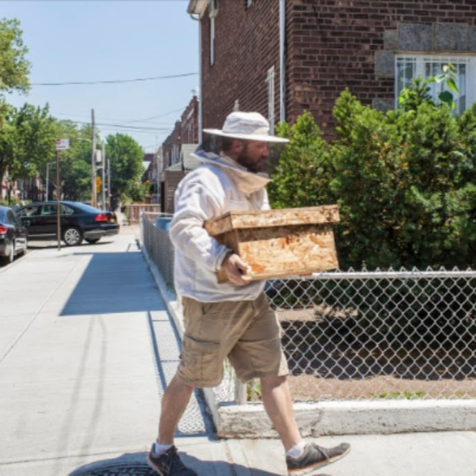 Edible Queens - Meet the Urban Beekeepers Behind Astor Apiaries