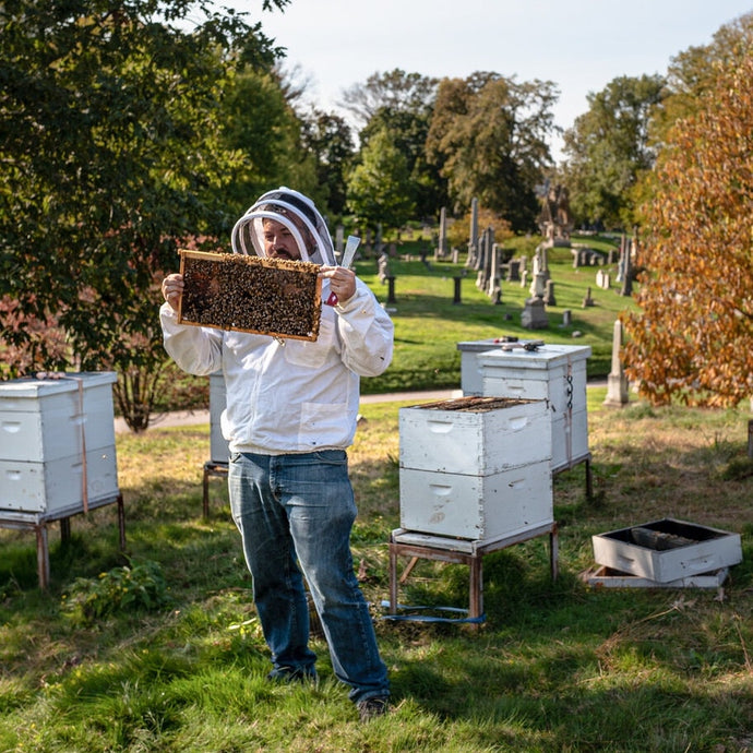 New York Times - How an Urban Beekeeper Spends His Sundays
