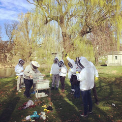 Astor Apiaries Events - Hive Tours at Green-Wood Cemetery