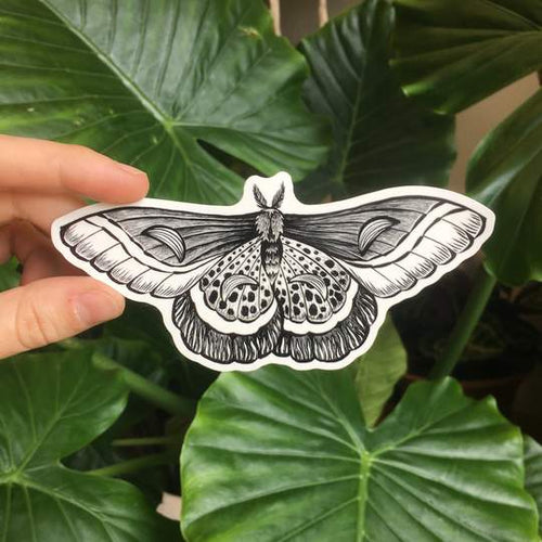 Night Moth Temporary Tattoo - Astor Apiaries