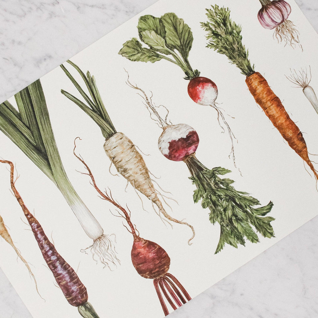 Hester & Cook - Paper Placemats with root vegetables design