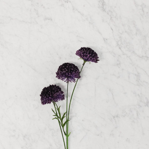 Silk Flower - Berry Allium Spray Stem