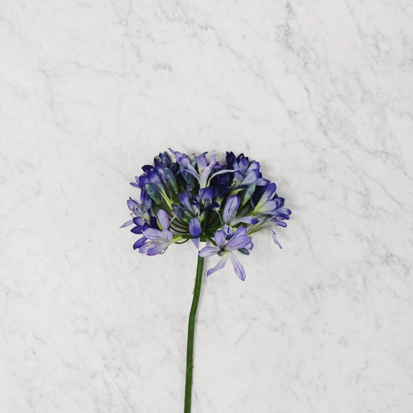 Silk Flower - Agapanthus Spray Stem