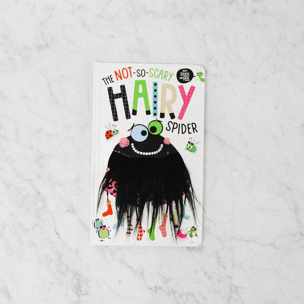 Front cover of THE NOT SO SCARY HAIRY SPIDER (HAIRY TOUCH AND FEEL)