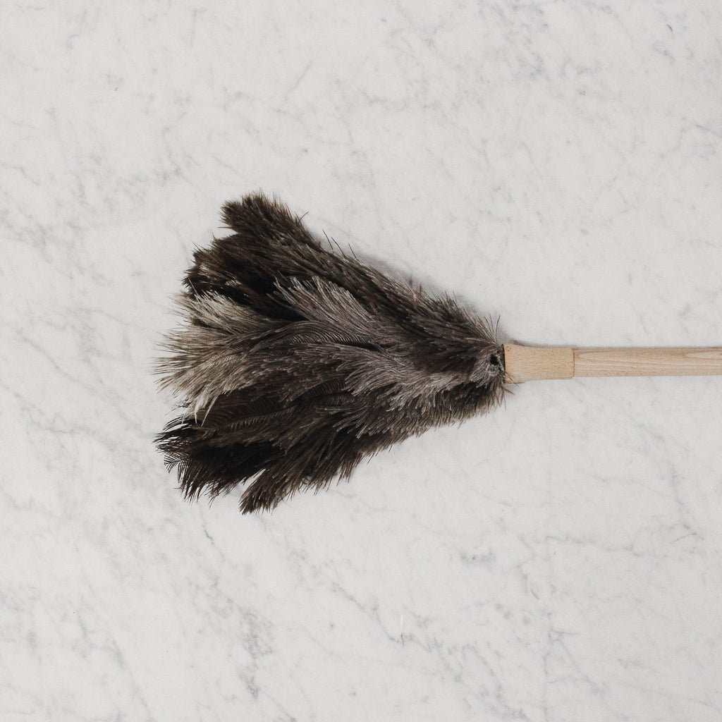 above view of feather duster with wood handle