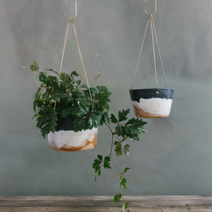 Landscape Brass Hanging Planter
