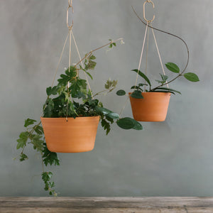 Terracotta Brass Hanging Planter