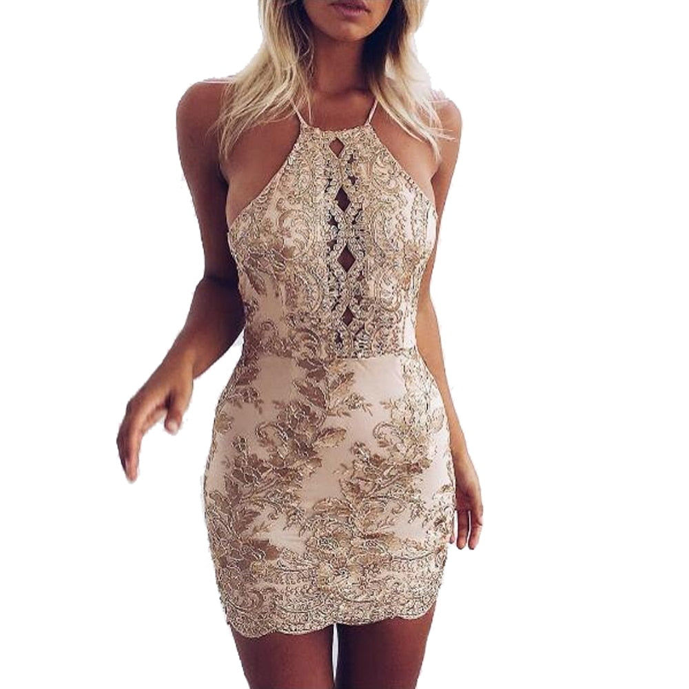 Sleeveless Backless Halter Sexy Lace Dress 2017 Women Skinny Vintage Summer Party dresses