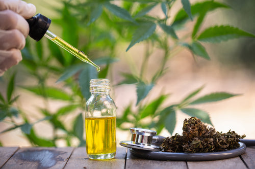 What Is CBD, How It Works, Is It Legal? and Where to Buy It.