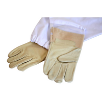 Budget Protective Gloves