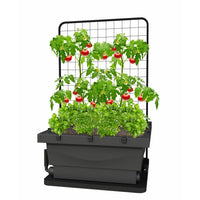 FoodCube Wicking Bed