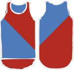 Red & Royal Blue Diagonal Shearing Singlet