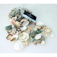 Bag Sea shells 300g - MIXED - WORLD OF DECOR