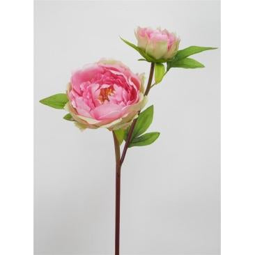 PINK HALF MOON PEONY - WORLD OF DECOR