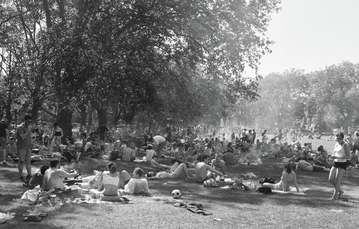 High summer Highbury Fields