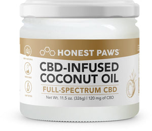 Best Honest Paws CBD-Infused Coconut Oil - Green Door CBD
