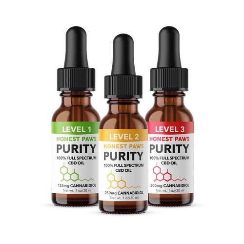 Best Honest Paws Purity Solutions - Dog CBD Oil - Green Door CBD