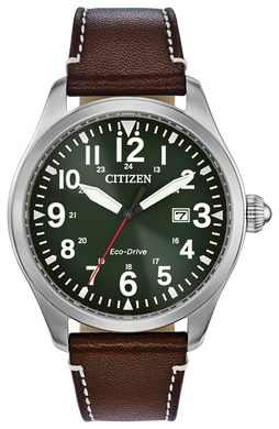 Citizen Eco-Drive Chandler - BM6838-25X