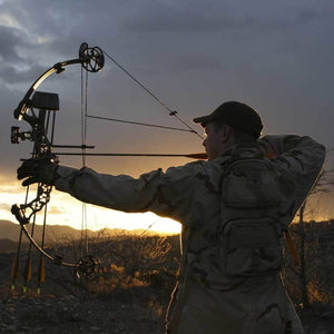 Compound Bow Tuning
