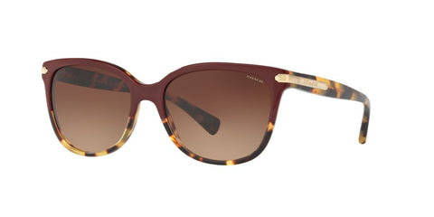 Coach HC8132 Sunglasses - rossetti-glasses