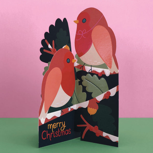 'Merry Christmas' Robins 3D Fold-out Christmas Card