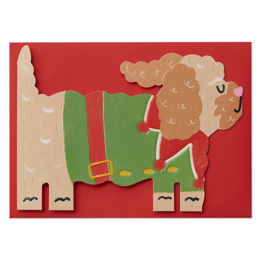 Cockapoo in a Christmas elf costume Card