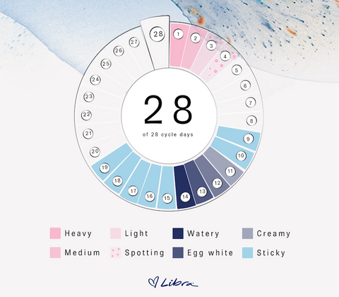 color of menstrual cycle