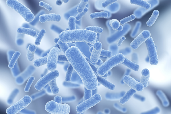 An amazing way of preserving your skin, our active probiotic, known as Lactobacillus, is proven to help with skin hydration and illumination when applied topically.