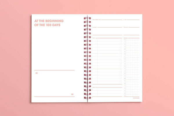 MOTEMOTE Rose Quartz Ten Minute Planner | 100 Days - USA located! - The Stationery Life!