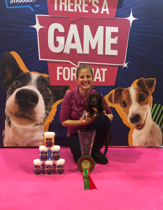 The Five Success Secrets of a Crufts Champion