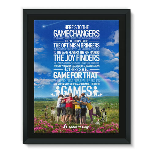 GameChanger - A Day In The Life Framed Canvas