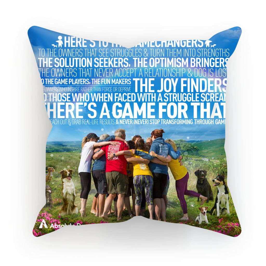 GameChanger - A Day In The Life Cushion