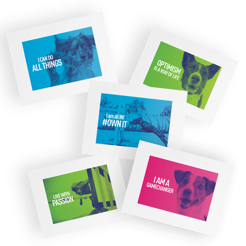 Absolute Dogs Mounted Cards