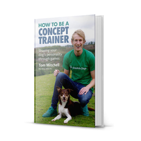 How To Be A Concept Trainer