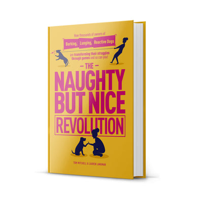 The Naughty But Nice Revolution Book & Audio Bundle!