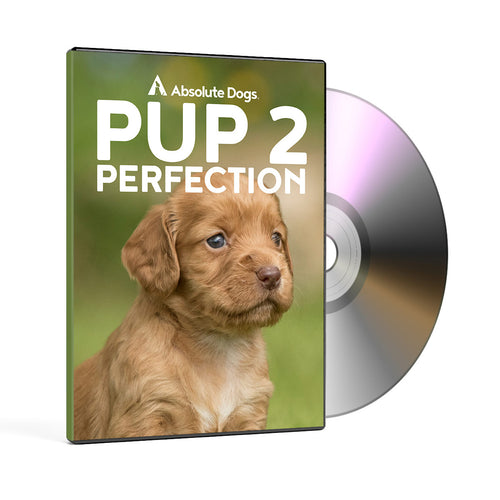 Pup2Perfection DVD
