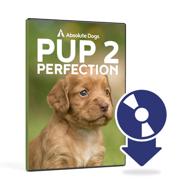 Pup2Perfection Digital Download