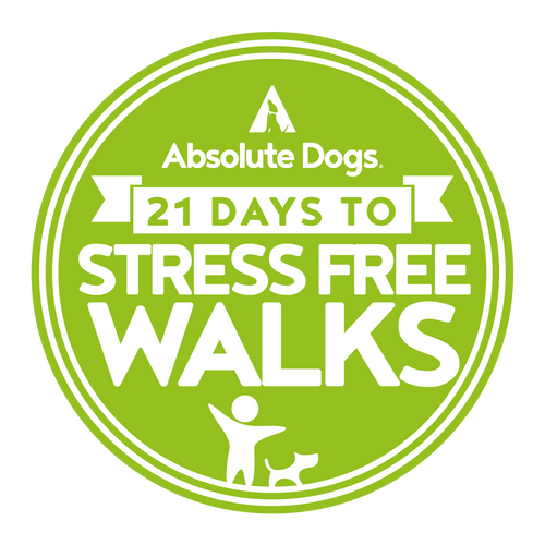 21 Days To Stress Free Walks
