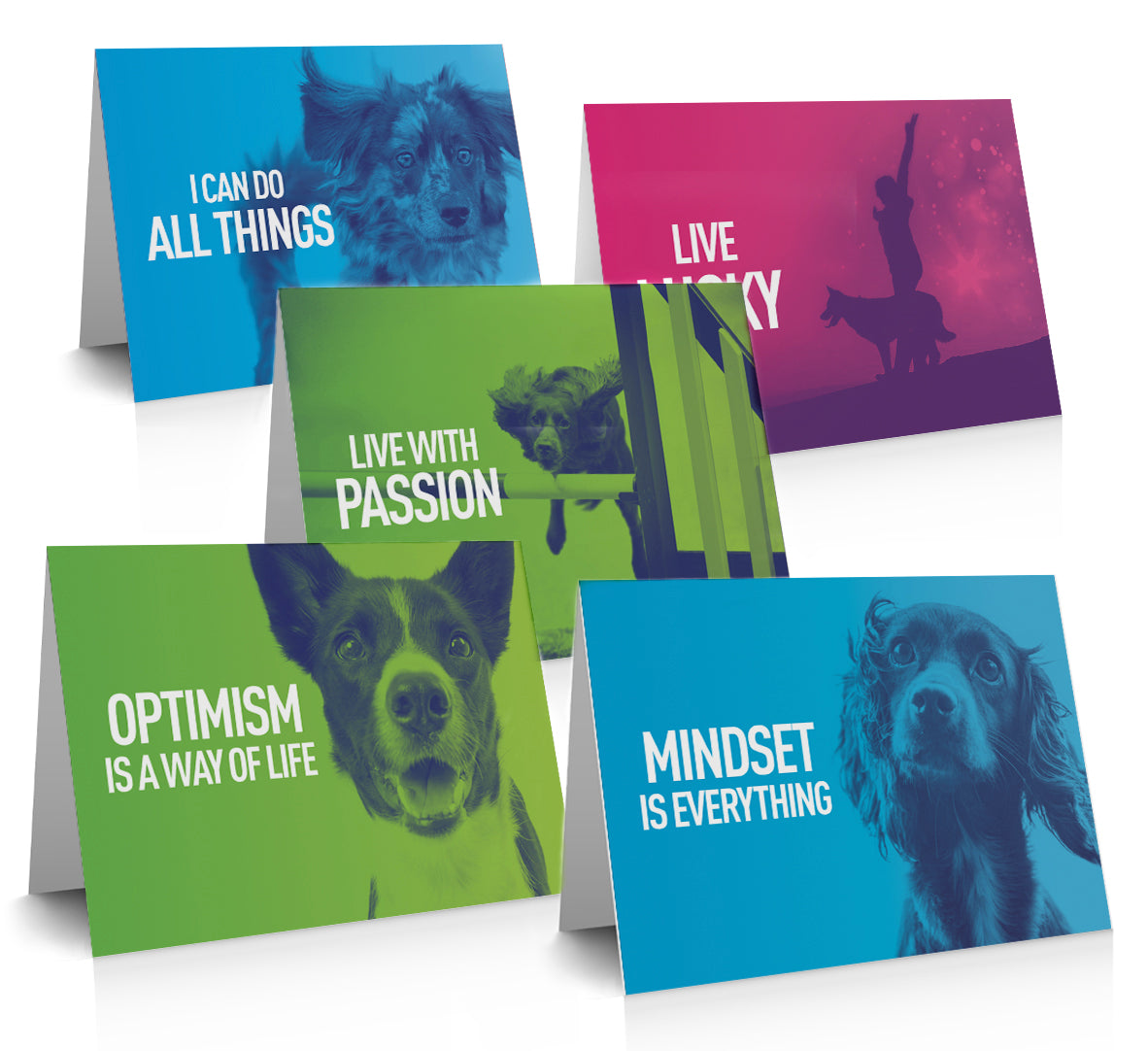Absolute Dogs Gift Card set